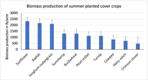 plants-fallow-summer-periods