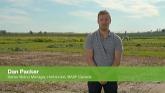 BASF Voraxor Herbicide