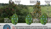 Crop-adapted spraying in blueberry