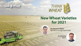 Think Wheat - New Wheat Varieties fo...