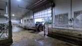 Its Summer Time! Chores On Dairy Farm