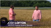 Double Cropping Wheat & Soybeans + S...