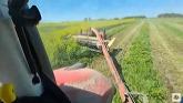 Cutting Mosnter Hay!!