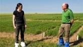 Lentil Herbicide Layering