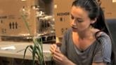 In The Lab – Hands-On Wheat Breeding