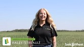 FHB Research and Management