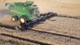 Farming Canadian Wheat Harvest