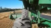 Oat harvest 2021, Northern Alberta