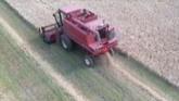 Harvesting Barley