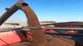 Canola Harvest in Manitoba   (Gleaners)