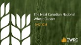 The Next Canadian National Wheat Cluster