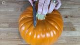 DIY Pumpkin Deer | Hometalk