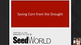 Saving Corn from the Drought - A See...