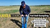 Canola Watch: Fall Soil Sampling