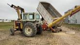 Harvesting barley, Northern Alberta