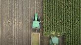 2021 Veldale Silage Harvest