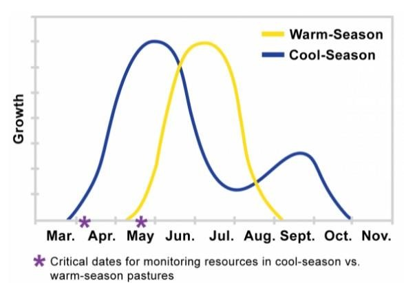 Line graph depicting warm-season and cool-season forage growth along with critical dates for monitoring cool-season resources (early-April) and warm-season resources (mid-May). For help understanding this graph, call SDSU Extension at 605-688-6792.