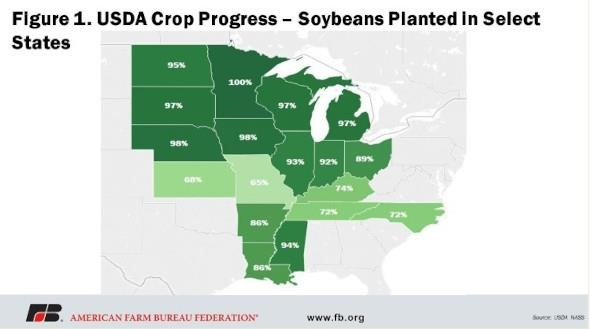 Figure 1 displays U.S. crop production for corn, soybeans, wheat and cotton since the 2018/19 marketing year, including the new 2021/2022 projections and the five-year average.