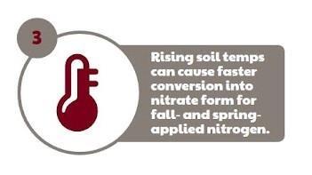 pre-plant-wheat-streak-mosaic-disease-management-strategies