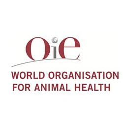 OIE logo