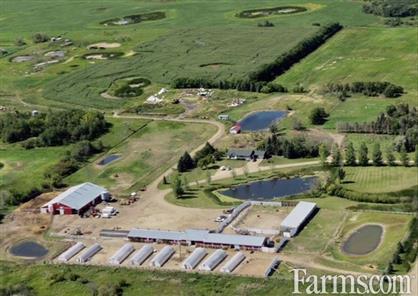 Excellent Business Opportunity for Sale, Elkhorn, Manitoba