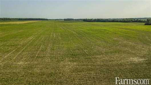 500 Acre Cash Crop- Middlesex County for Sale, Strathroy, Ontario