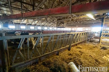 Embro Ongoing Dairy for Sale, Embro, Ontario