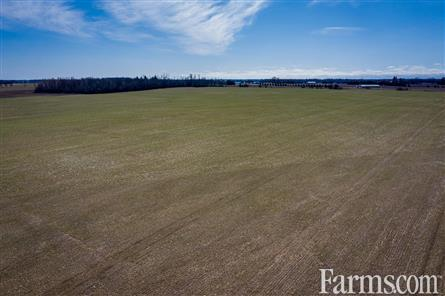 132 Acres Bare Land - Kirkton for Sale, Kirkton, Ontario