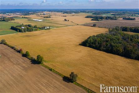 195 Acre Cash Crop - Norwich County for Sale, Windham Centre, Ontario
