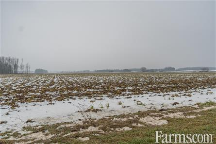 48.5 Acre Cash Crop - Middlesex County for Sale, Thorndale, Ontario