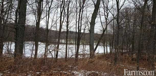 SOLD Ag land & Private Airstrip for Sale, Straffordville, Ontario