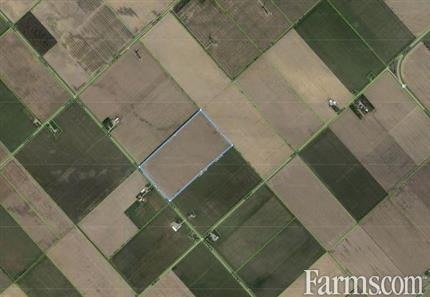 SOLD - 51 acres bare land Chatham/Kent for Sale, Tilbury, Ontario