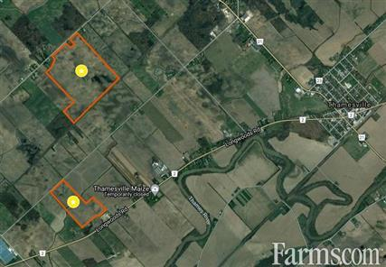 232 acres in Chatham/Kent for Sale, Thamesville, Ontario