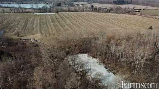Scotland, ON Approx 100 Acre Parcel Of Land for Sale, Scotland, Ontario