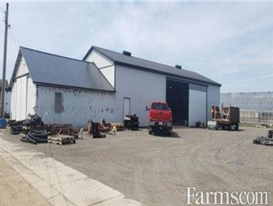 Earlton Tie Stall Dairy Farm for Sale, Earlton, Ontario