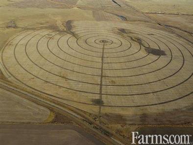 Grain Land for Sale, Rosedale, Saskatchewan